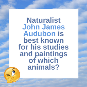 Question of the Day | The Birds of Audubon