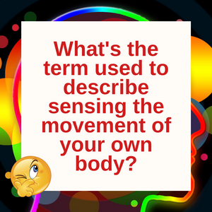 Question of the Day | Sensing Your Own Body