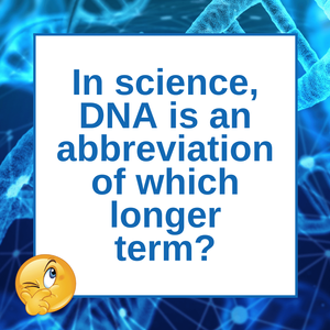 What Exactly is DNA?