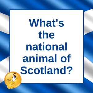 The National Animal of Scotland